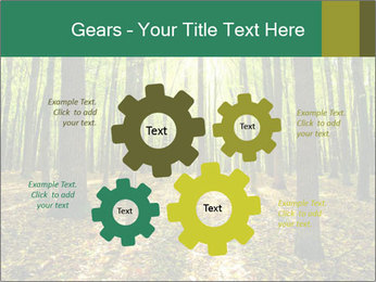 Green Forest PowerPoint Templates - Slide 47
