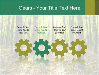 Green Forest PowerPoint Templates - Slide 48
