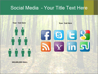 Green Forest PowerPoint Templates - Slide 5