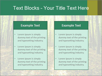 Green Forest PowerPoint Templates - Slide 57