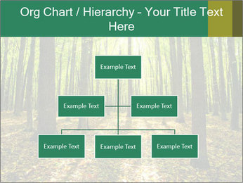 Green Forest PowerPoint Templates - Slide 66