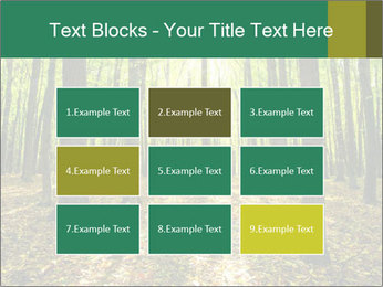 Green Forest PowerPoint Templates - Slide 68