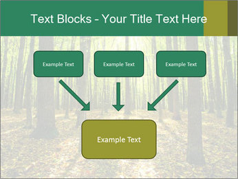 Green Forest PowerPoint Templates - Slide 70