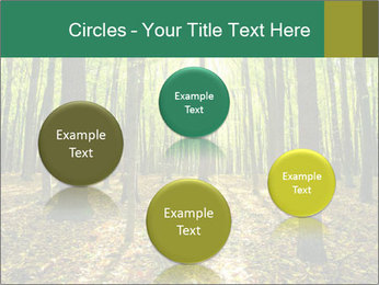 Green Forest PowerPoint Templates - Slide 77