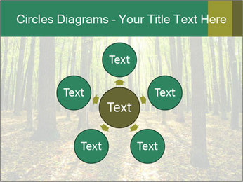 Green Forest PowerPoint Templates - Slide 78