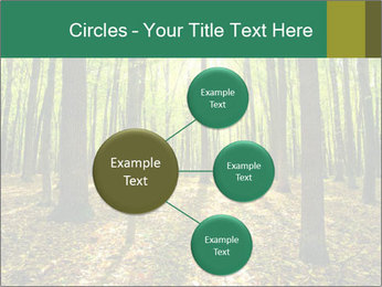 Green Forest PowerPoint Templates - Slide 79