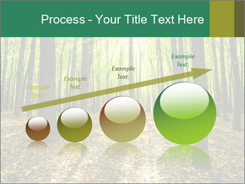 Green Forest PowerPoint Templates - Slide 87
