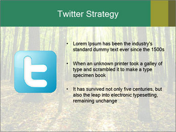 Green Forest PowerPoint Templates - Slide 9
