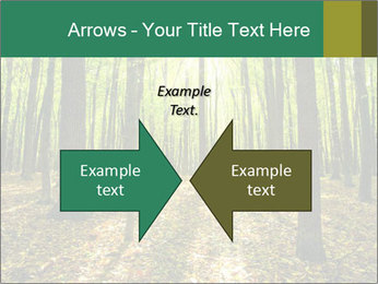Green Forest PowerPoint Templates - Slide 90