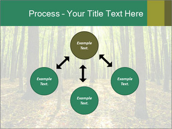 Green Forest PowerPoint Templates - Slide 91