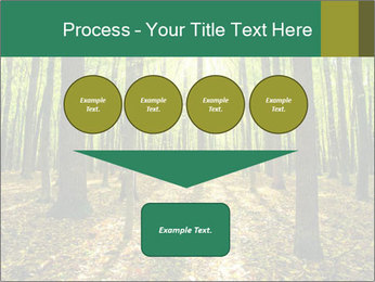 Green Forest PowerPoint Templates - Slide 93
