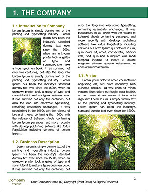 0000089363 Word Template - Page 3