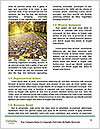 0000089363 Word Templates - Page 4