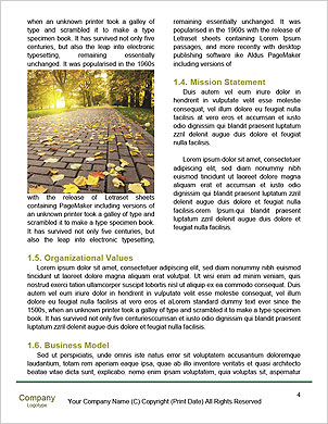 0000089363 Word Template - Page 4