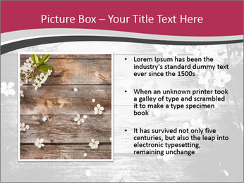 Black And White Wooden Surface PowerPoint Templates - Slide 13