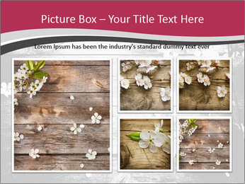Black And White Wooden Surface PowerPoint Templates - Slide 19