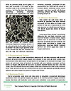 0000089367 Word Template - Page 4