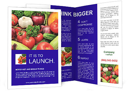 0000089368 Brochure Template