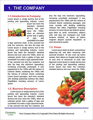0000089368 Word Template - Page 3