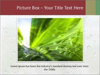 Wet Window PowerPoint Templates - Slide 16