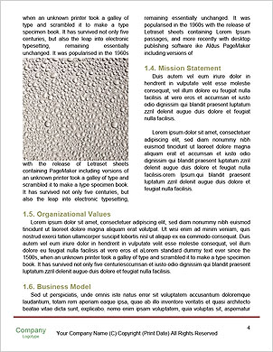 0000089372 Word Template - Page 4