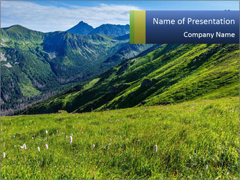 Green Rocks PowerPoint Templates - Slide 1