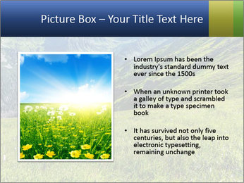 Green Rocks PowerPoint Templates - Slide 13