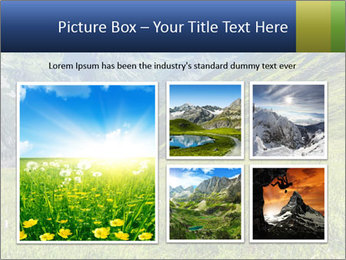 Green Rocks PowerPoint Templates - Slide 19