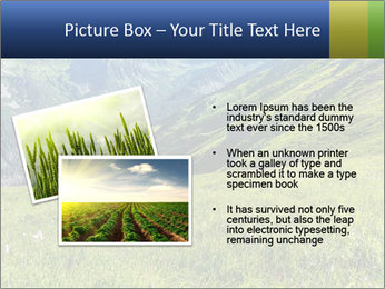 Green Rocks PowerPoint Templates - Slide 20