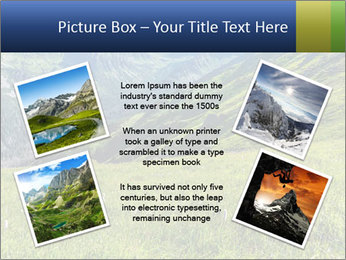 Green Rocks PowerPoint Templates - Slide 24