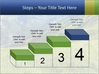 Green Rocks PowerPoint Templates - Slide 64