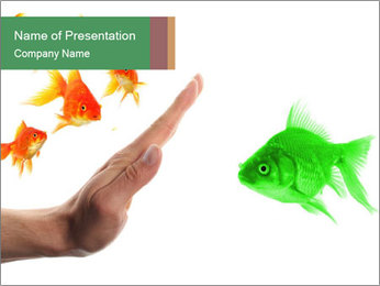 Fish Discrimination PowerPoint Template - Slide 1
