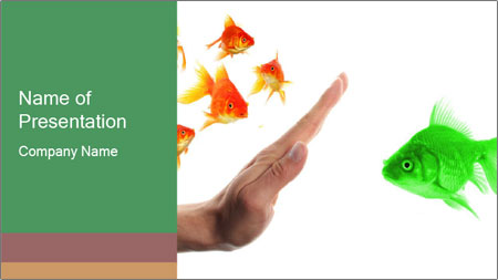 Fish Discrimination PowerPoint Template