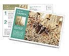 0000089385 Postcard Templates
