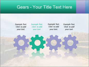 Sandy Road PowerPoint Template - Slide 48