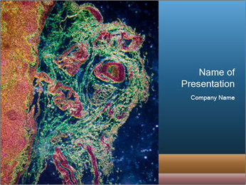 Microscopic Organism PowerPoint Template