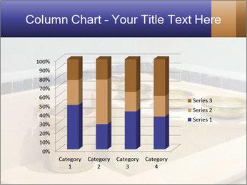 Hot Hammam PowerPoint Templates - Slide 50