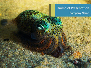 Great Marine Fish PowerPoint Template - Slide 1
