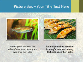 Great Marine Fish PowerPoint Templates - Slide 18