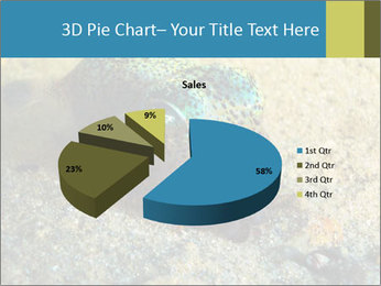 Great Marine Fish PowerPoint Templates - Slide 35