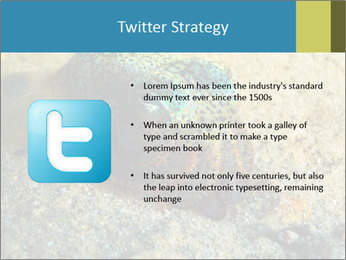 Great Marine Fish PowerPoint Template - Slide 9