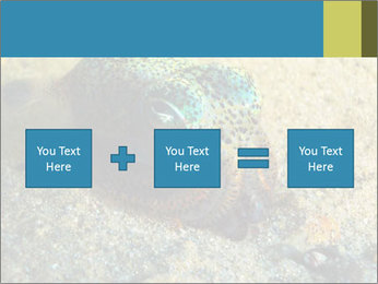 Great Marine Fish PowerPoint Templates - Slide 95