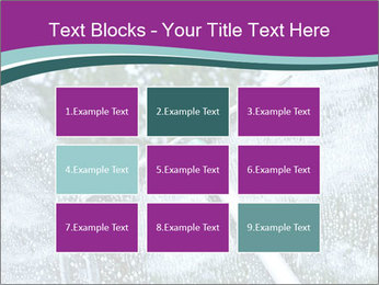 Window Cleaning PowerPoint Templates - Slide 68