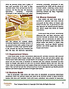 0000089397 Word Templates - Page 4