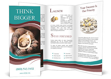 Beautiful oyster in his hand. Brochure Templates