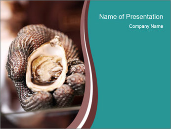 Open Oysters PowerPoint Template