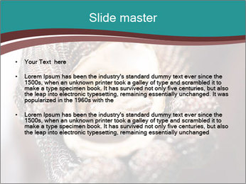 Open Oysters PowerPoint Templates - Slide 2