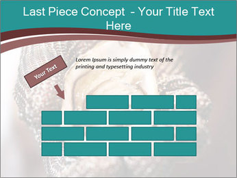 Open Oysters PowerPoint Templates - Slide 46