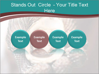 Open Oysters PowerPoint Templates - Slide 76