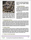 0000089406 Word Templates - Page 4